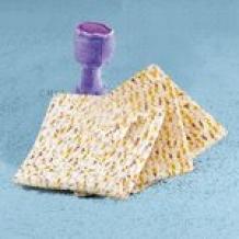 Passover Plush Set
